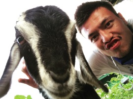goat-and-i